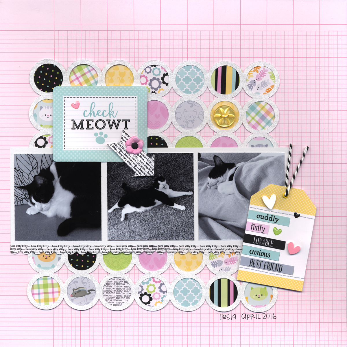 This bundle is the cat's meow | Crafted by Archivers